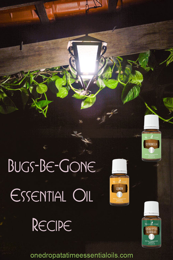 Bugs-Be-Gone Essential Oil Recipe
