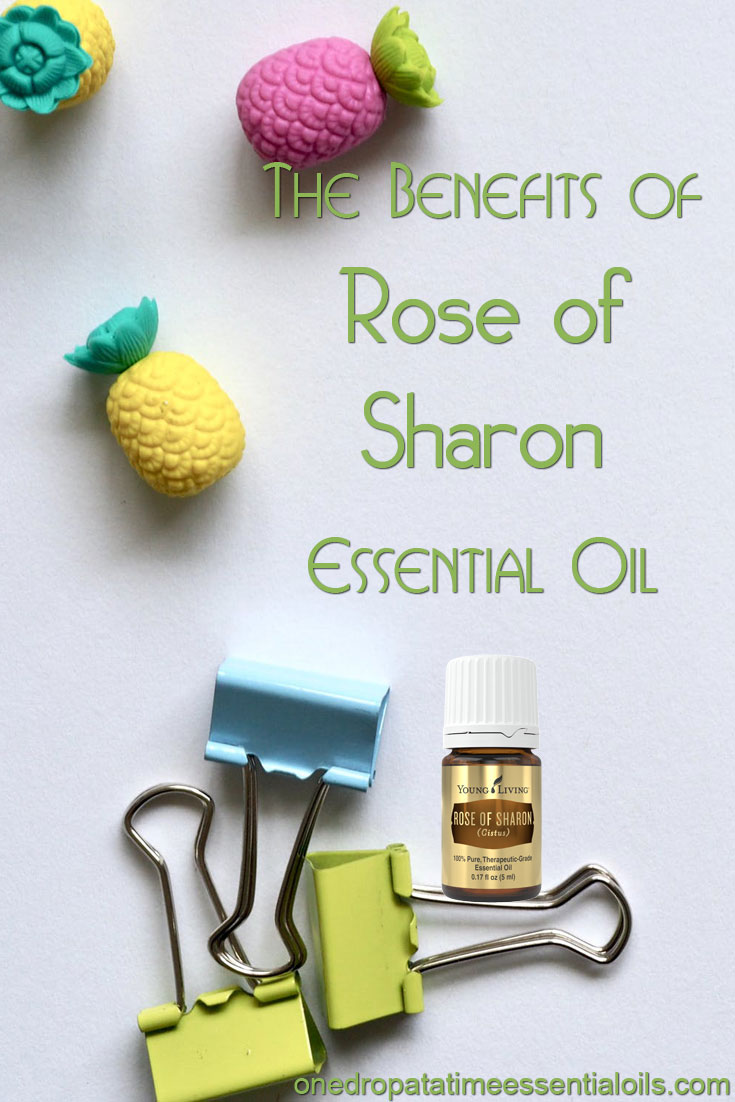 Rose Of Sharon Essential Oil