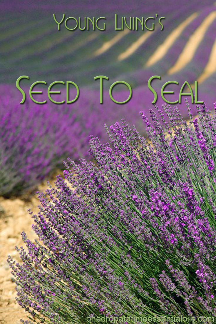 Young Living Seed-to-Seal