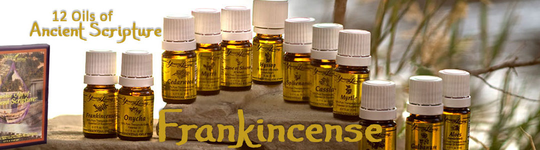Twelve Oils of Ancient Scripture - Frankincense Essential Oil