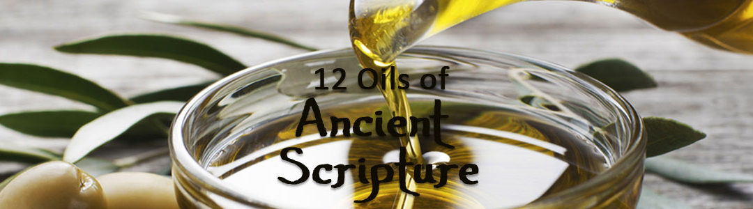 Twelve Oils of Ancient Scripture